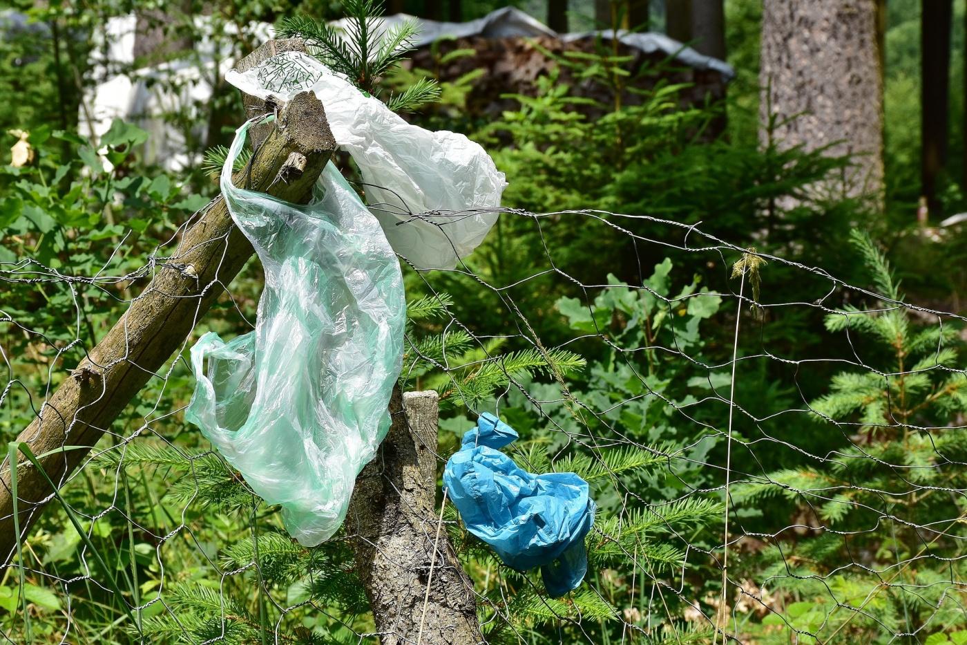 Akcja sprzątania Podhala - dołącz do śmieciobrania