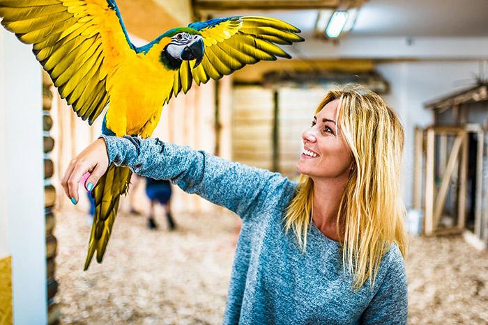 Papugarnia-Egzotyczne-Zakopane
