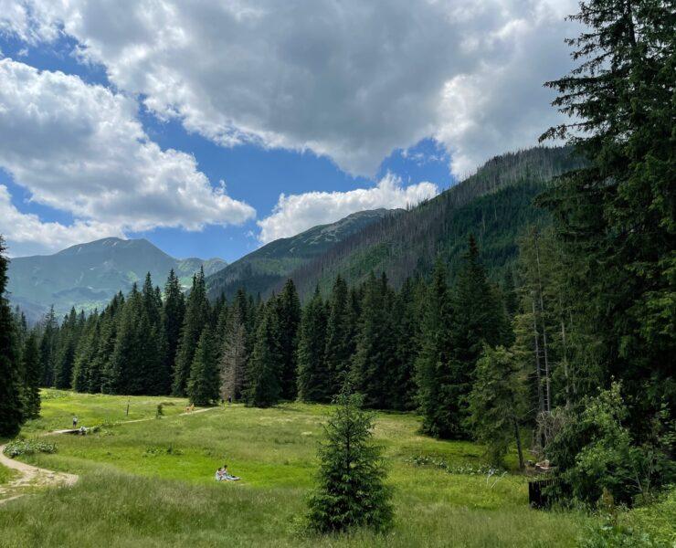 Dolina Kościeliska - pomysł na spacer w Tatrach